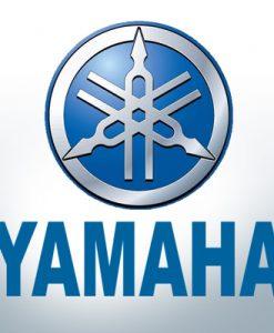 Anodi compatibili con Yamaha e Yanmar Zinco